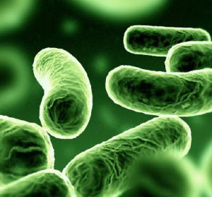 antimicrobiano